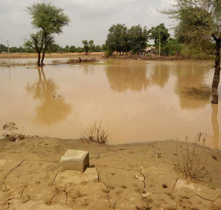 Some areas are still flooded. Credit: Damayantee Dhar/ The Wire