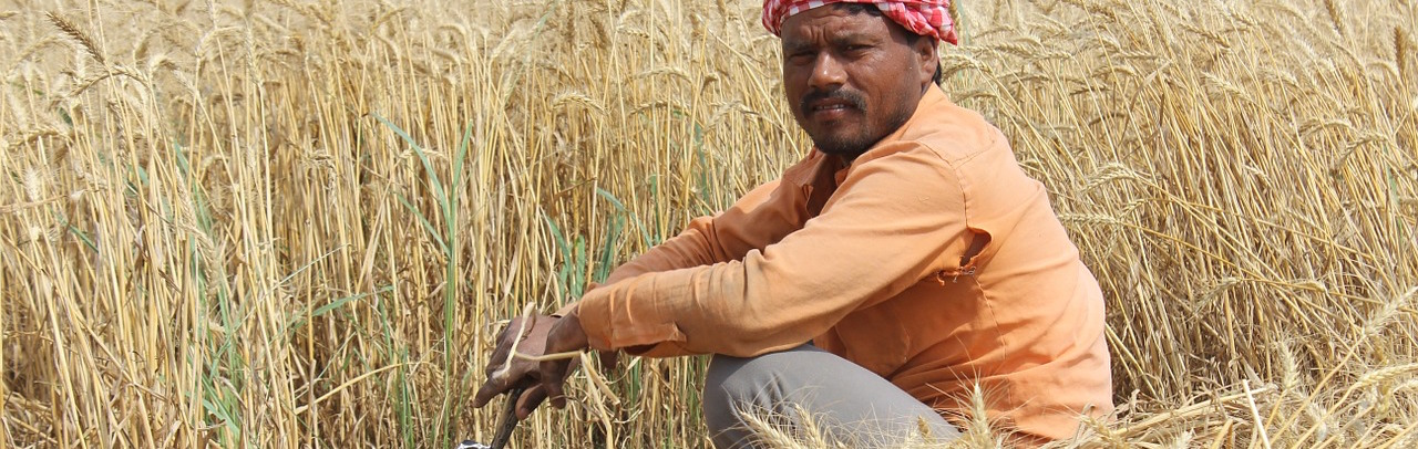 Is Climate Change Killing the Indian Farmer?