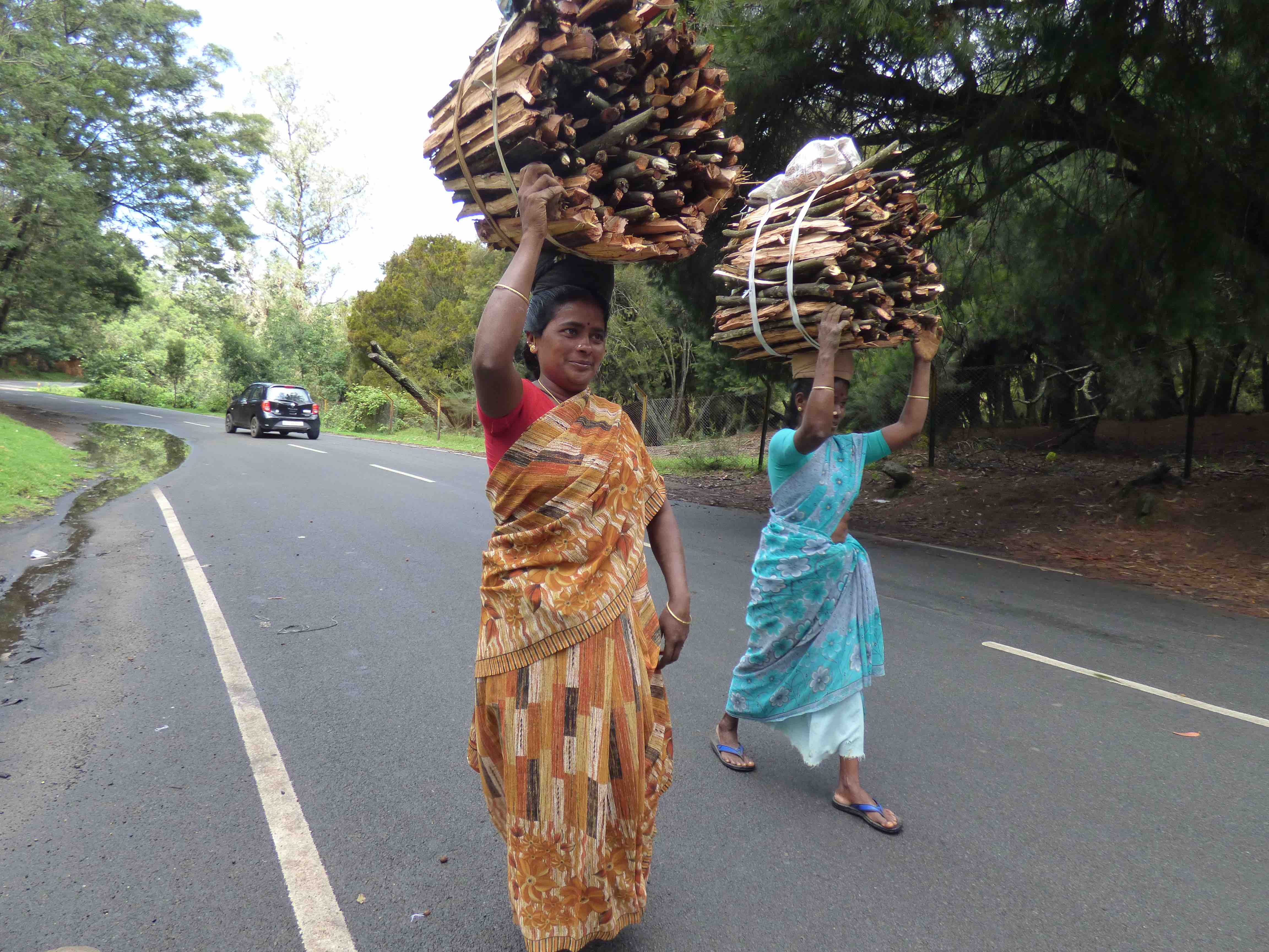 Women carrying headloads of firewood. Credit: Janaki Lenin