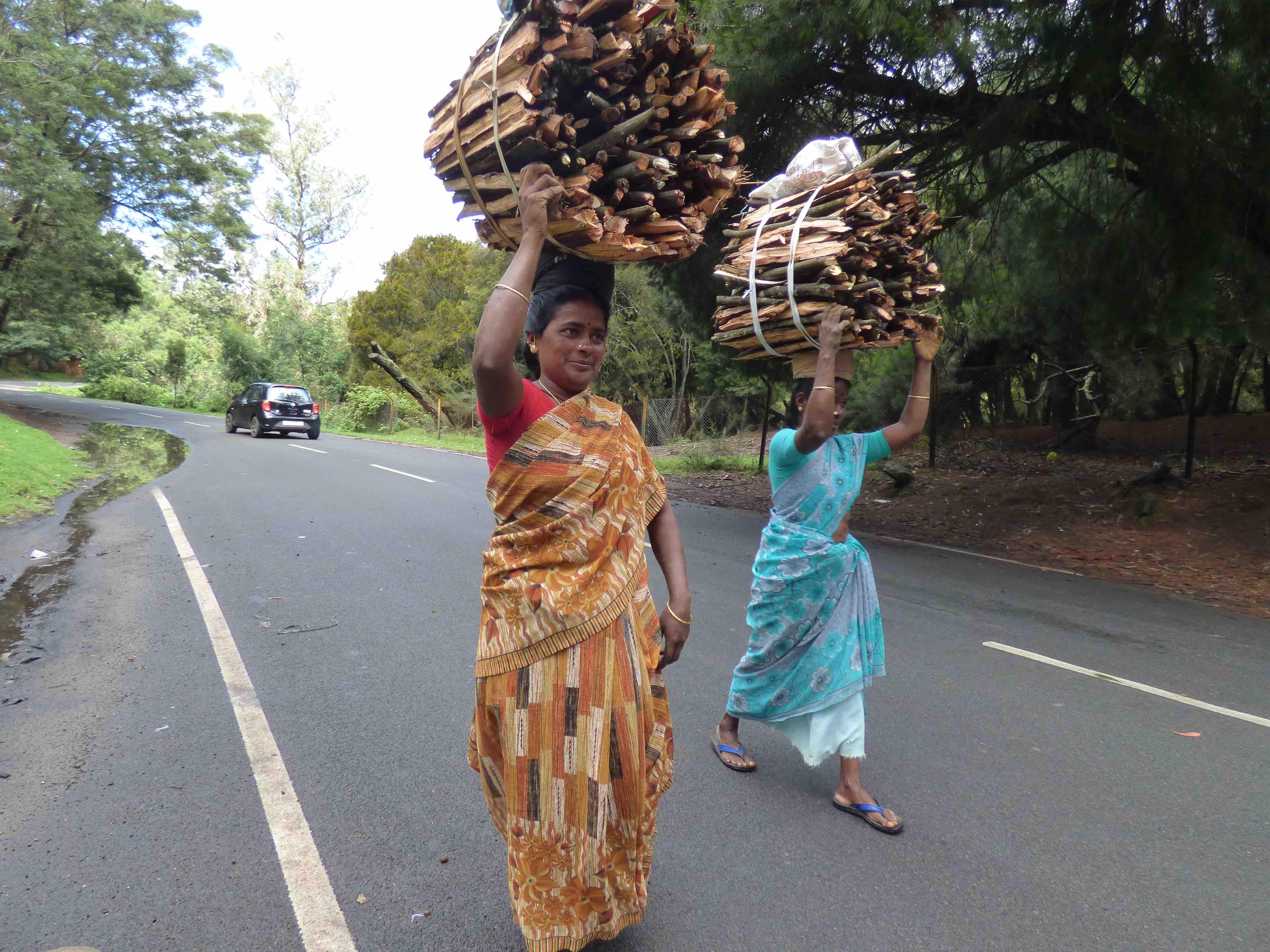 Women carrying headloads of firewood. Credit: Janaki Lenin