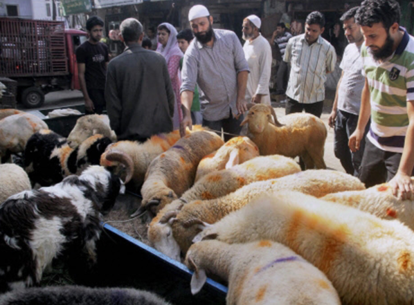 On Bakrid, Muslims in Ayodhya Perform 'Qurbani' Without Fear