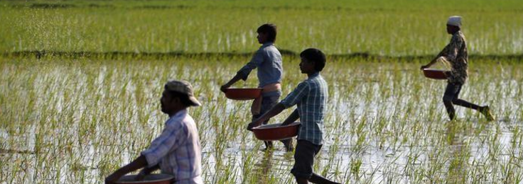 In State-Level Changes to Land Laws, a Return to Land Grabbing in Development's Name