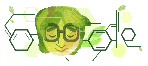 A Google doodle celebrates Asima Chatterjee's contributions to chemistry on her birth centenary