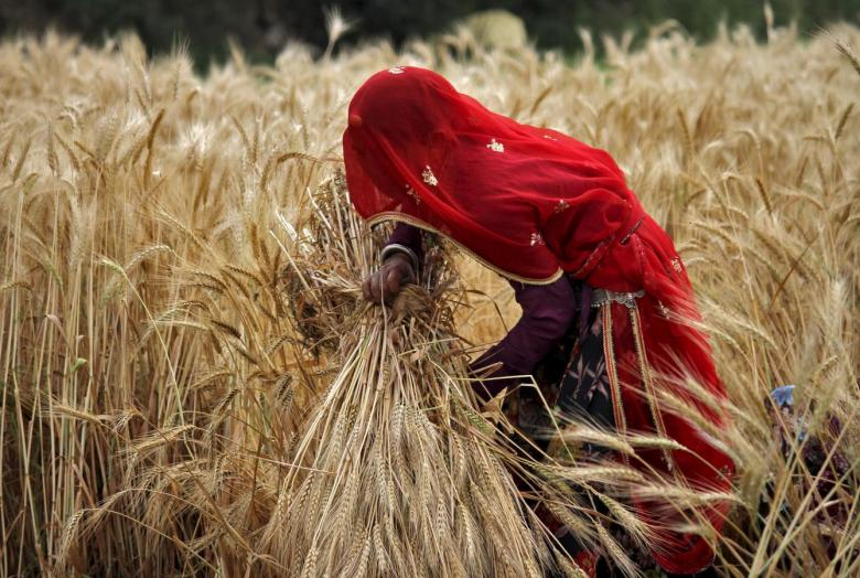 The Story of Women Farmers in India Is That of Double Jeopardy – Being a Woman and a Farmer