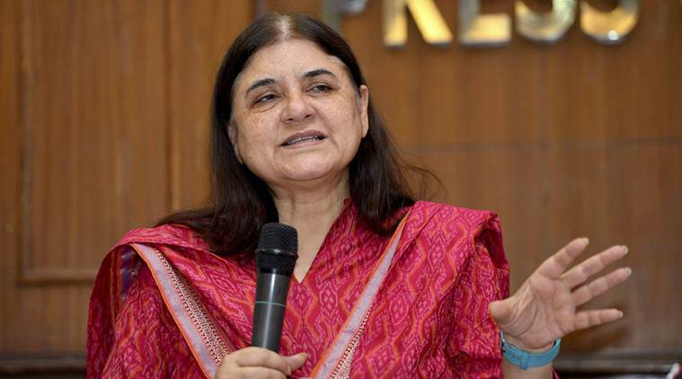 Maneka Gandhi to Muslims in Sultanpur: 'Vote for Me or Don't Come to Me for Work'