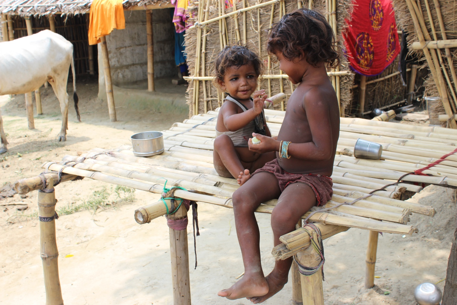 Scenes of mosquito bites all over the body among the children in Ganesthan village of Madhepura are quite common. India bears a huge burden of mosquito-borne diseases, contributing 34 percent of global dengue and 11 percent of global malaria. Despite of this, the government has made no headway in talking the mosquito menace.