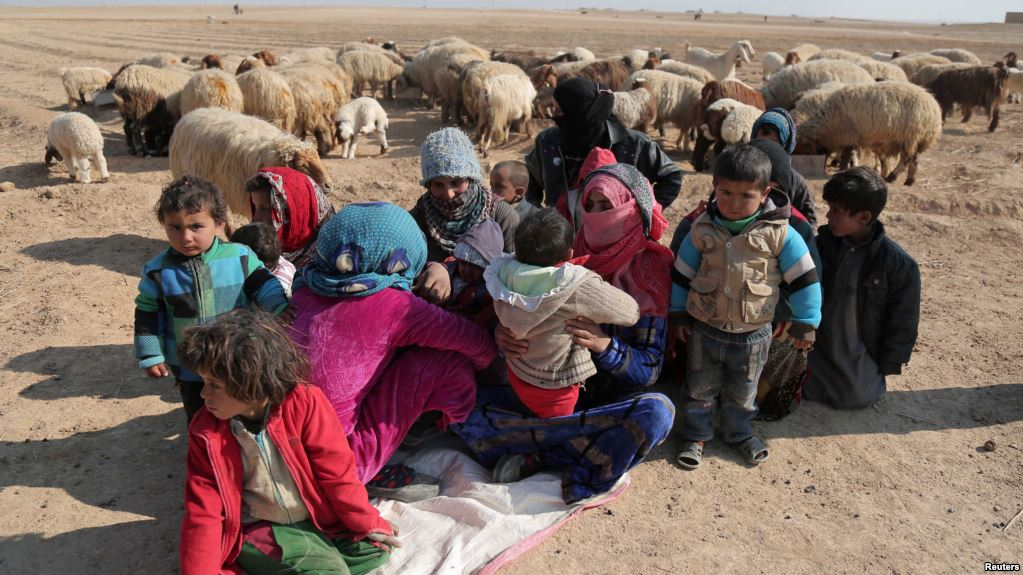 Internally displaced Syrians who fled Raqqa rest near a flock of sheep. Credit: Reuters
