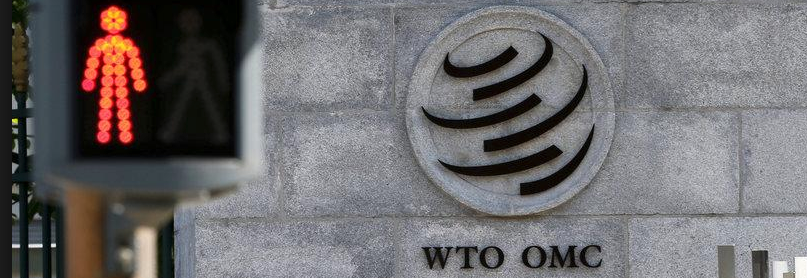 Why Has the US Launched an Offensive Against WTO's Dispute Settlement System?