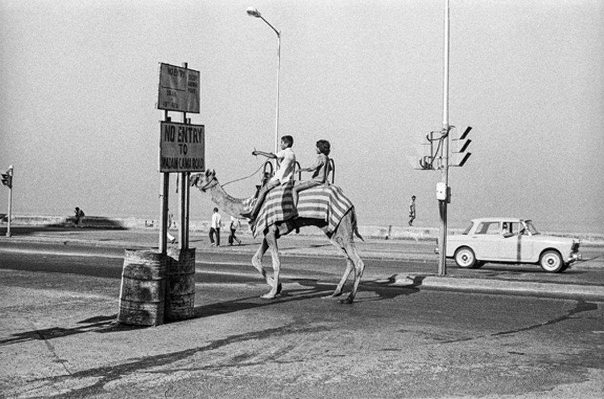 Camel on Marine Drive, Bombay 1977. Image Copyright ©Sooni Taraporevala, Image Courtesy: Sunaparanta