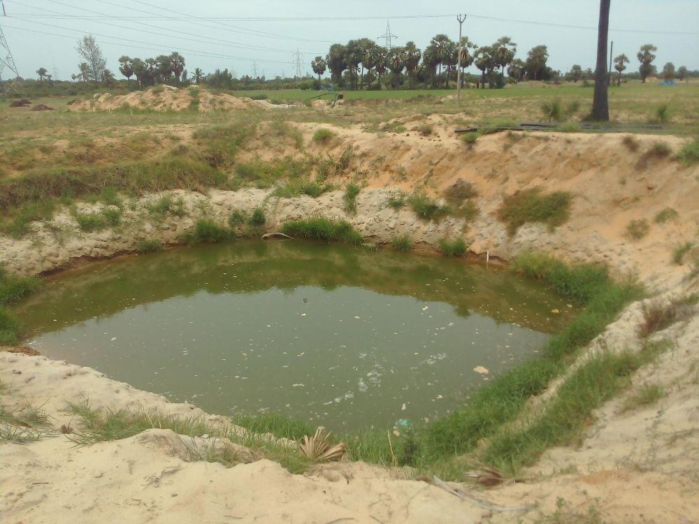 Baskaran's farm land. Credit: Special Arrangement
