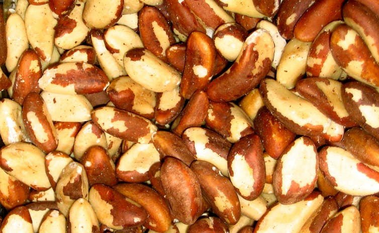Why Brazil Nuts Are Rocketing in Price