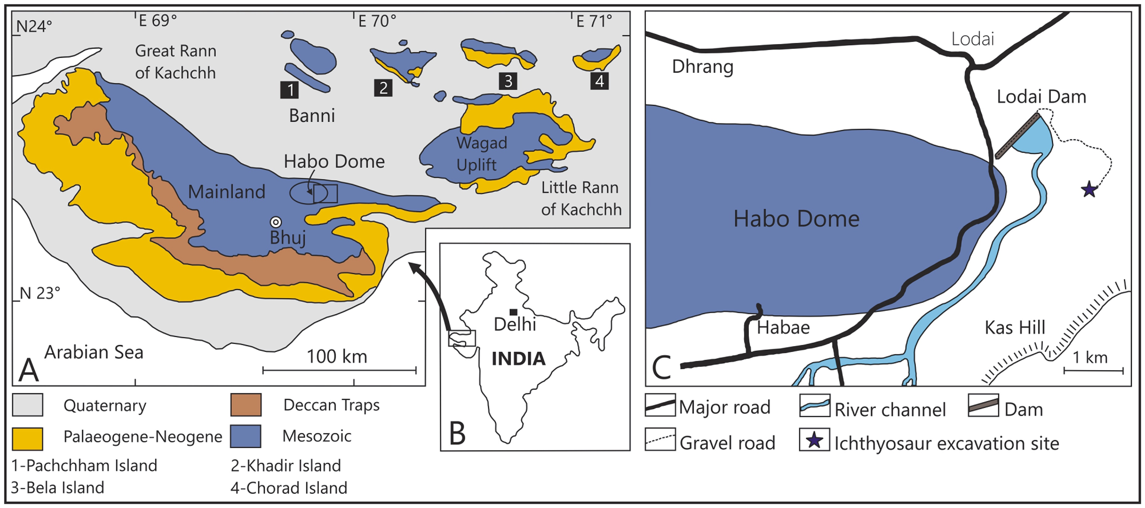 Geological and location map of the Upper Jurassic ichthyosaur site of Kutch, Gujarat. Caption and source: PLOS