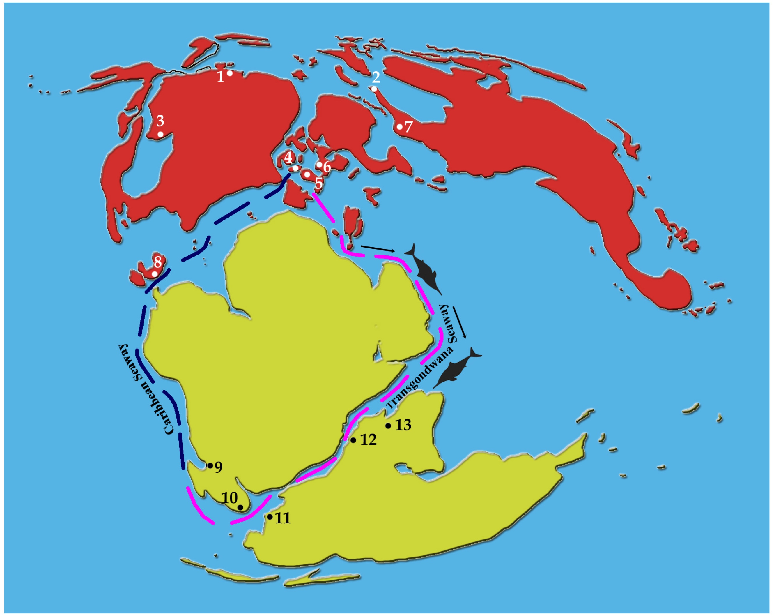 The world in the late Jurassic period. The part known as India today is marked at no. 13. The route that the ichthyosaur could have taken from Laurasia to Gondwanaland is shown in pink. Source: PLOS