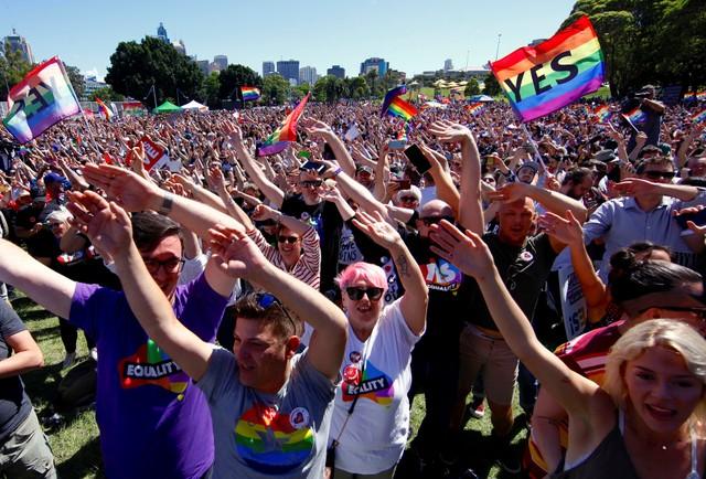 Rainbow Celebrations as Australia Votes for Same-Sex Marriage
