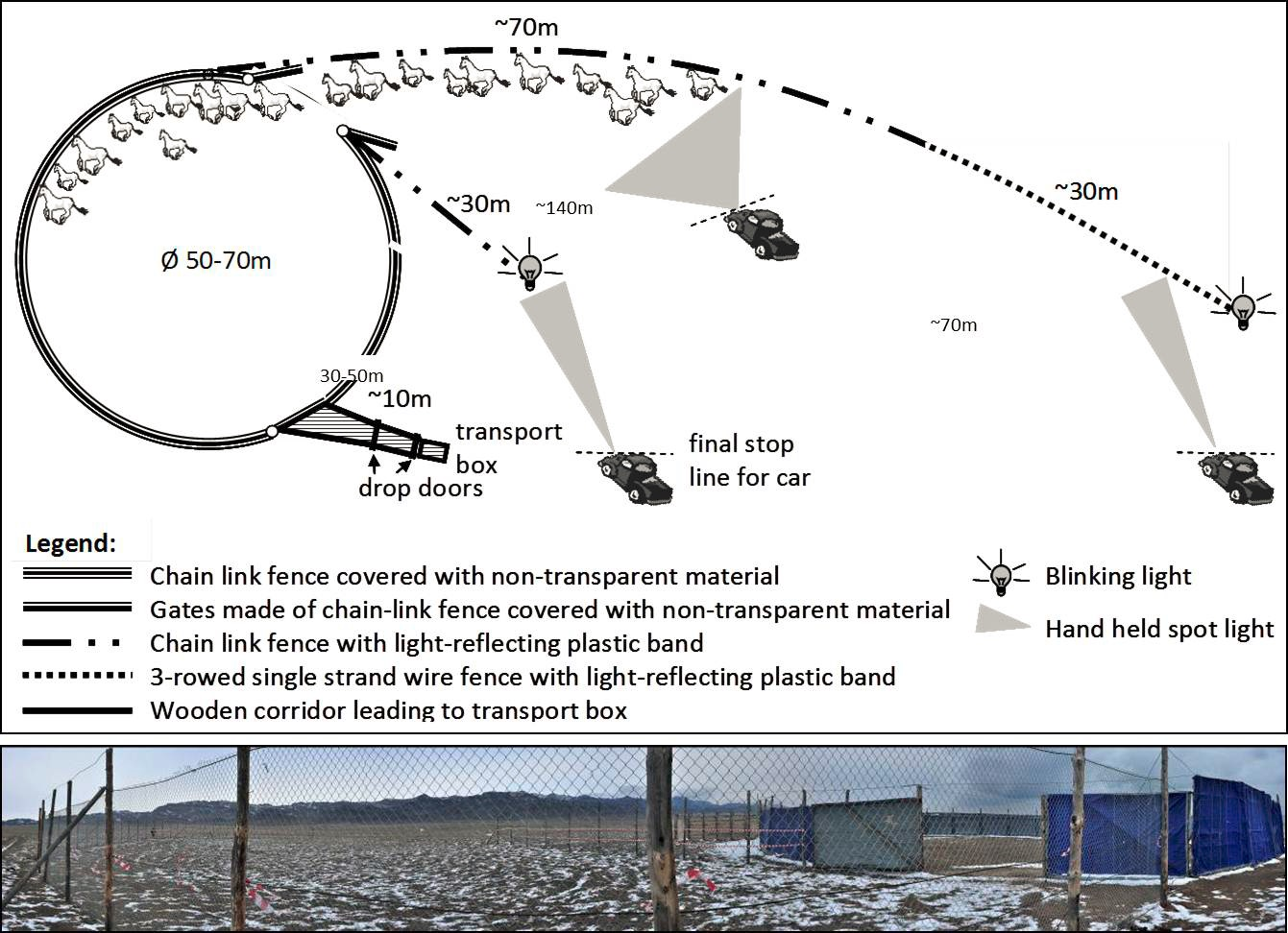 A schematic diagram showing the capture corral design. Credit: NINA