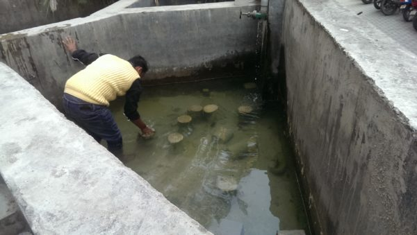 A member of Ranjani's team picks out a concrete block to show me. Credit: The Life of Science