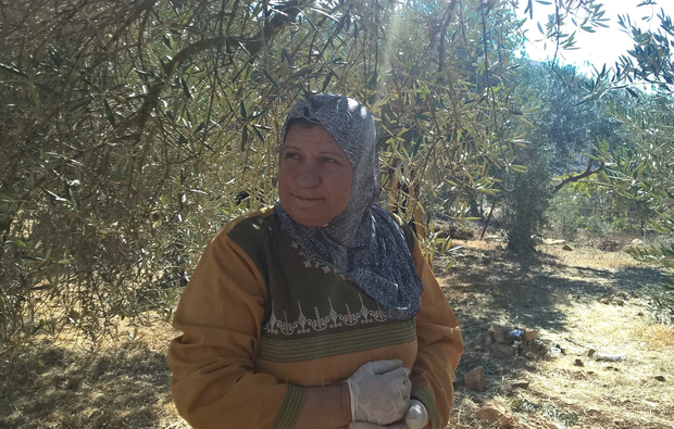 Nadia Manasra stands in her olive grove in the village of Wadi Fuqin on 10 November 2017 Credit: MEE/Chloé Benoist