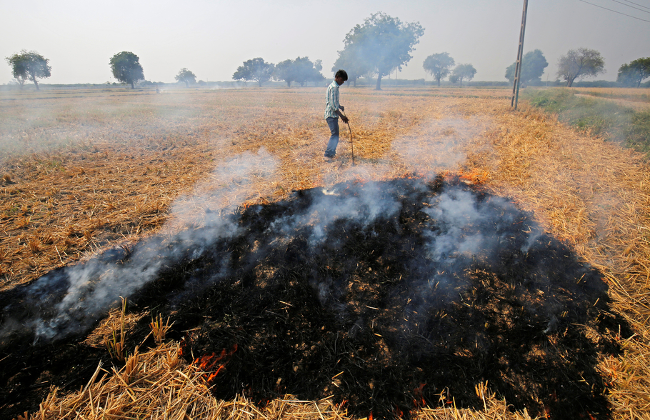 A farmer burns paddy waste stubble in a field on the outskirts of Ahmedabad, India November 10, 2017. Credit: Reuters