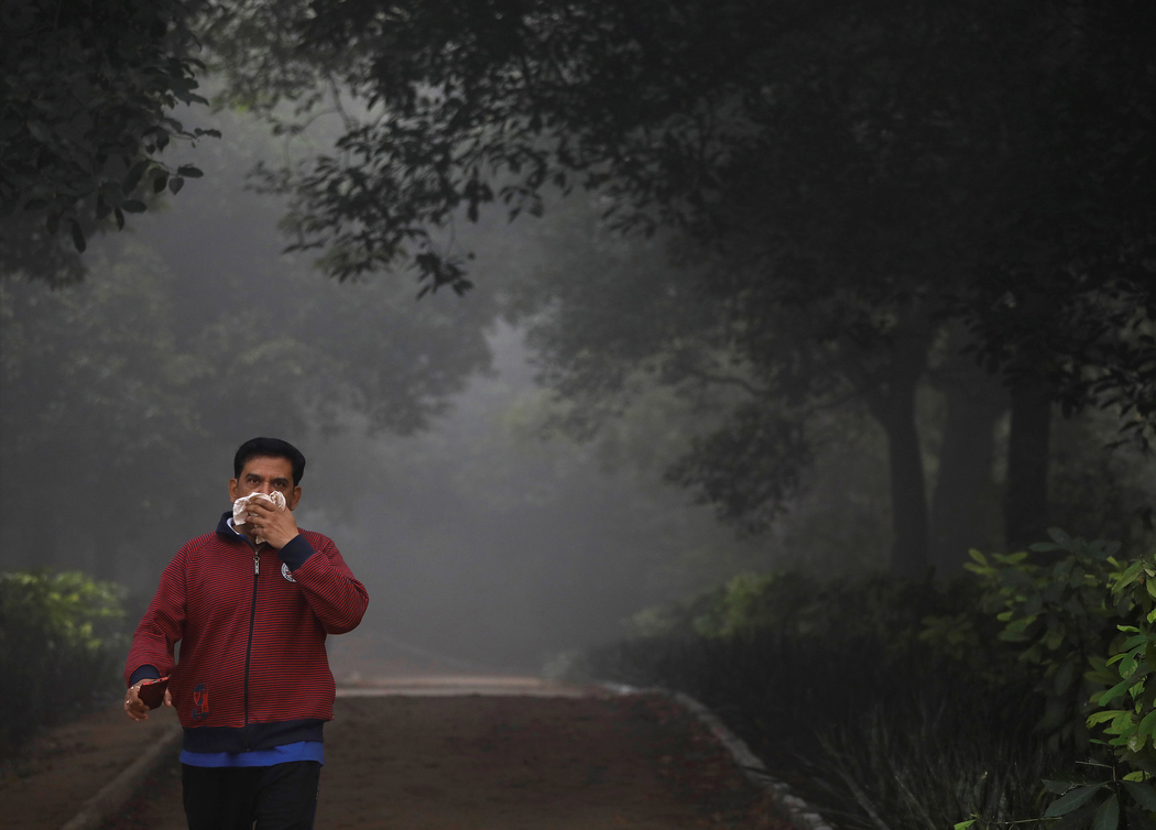 Delhi Smog: Entrepreneurs Offer Hope With Technologies to Reuse Crop Biomass