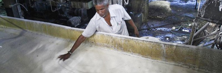 In Uttar Pradesh and Maharashtra's Sugar Alliance, a Sweet Mixture of Politics and Business