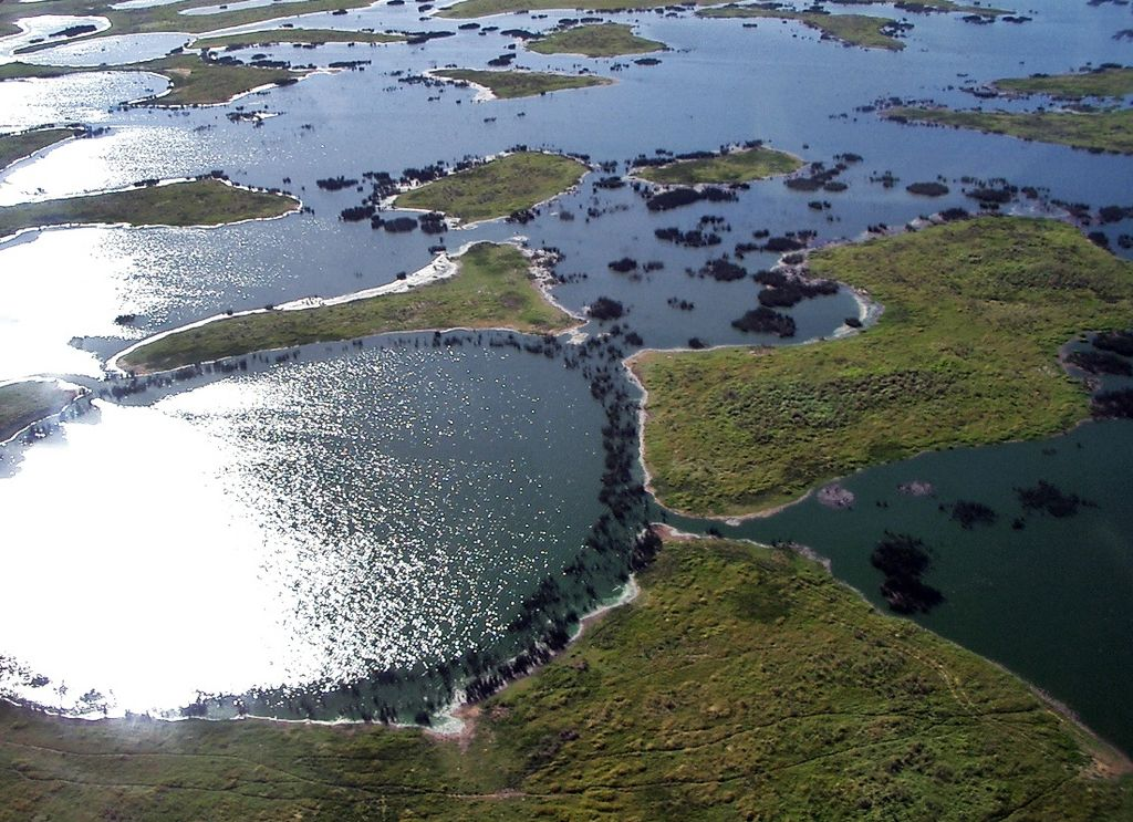 Hydroelectric Dams Threaten Brazil's Mysterious Pantanal