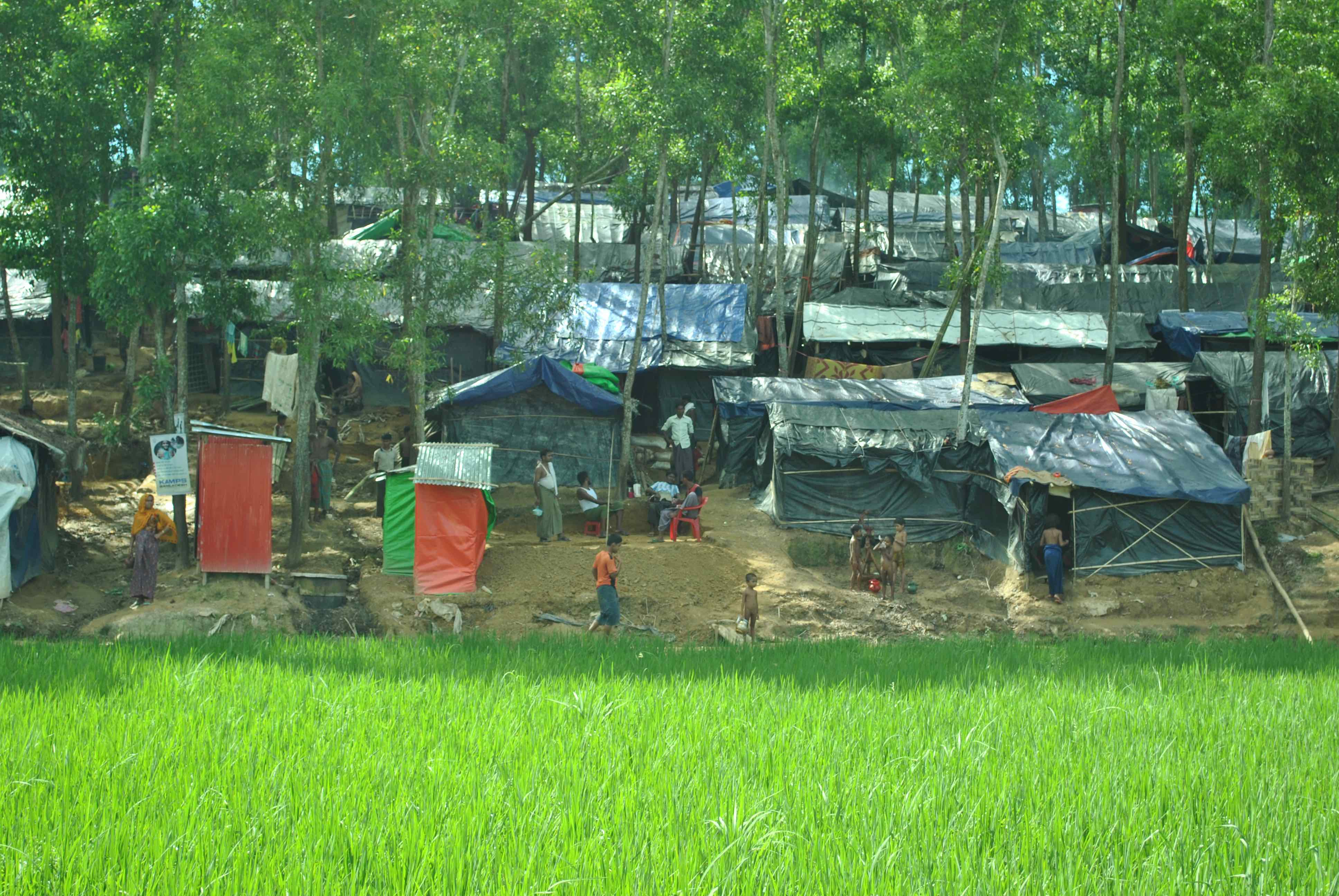 In Bangladesh, Locals Living Near Rohingya Camps Hope for Quick Repatriation of Refugees