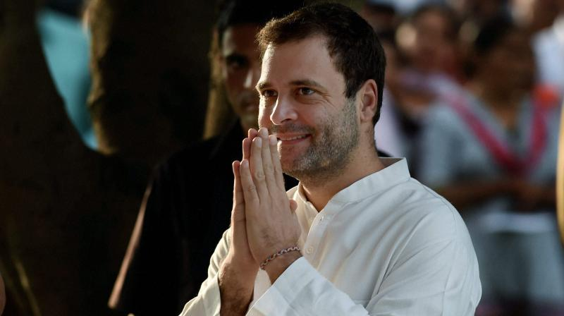 Congress president elect Rahul Gandhi. Credit: PTI