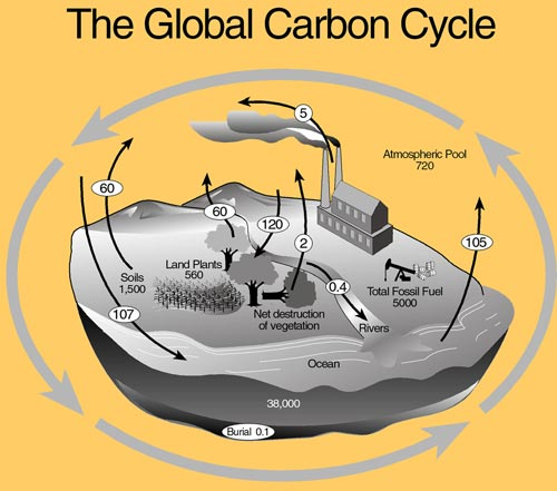 Source: Kansas State University, Soil Carbon Center